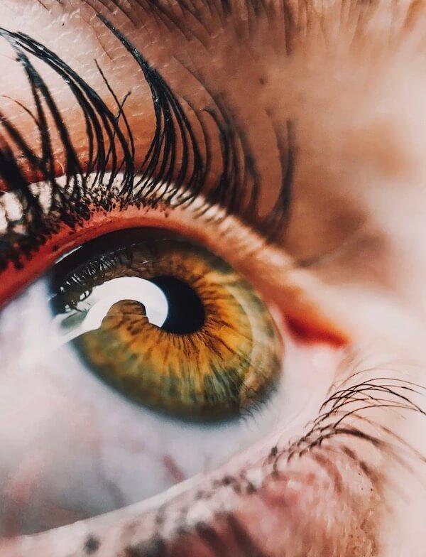 Offenes braun-grünes Auge mit Wimperntusche